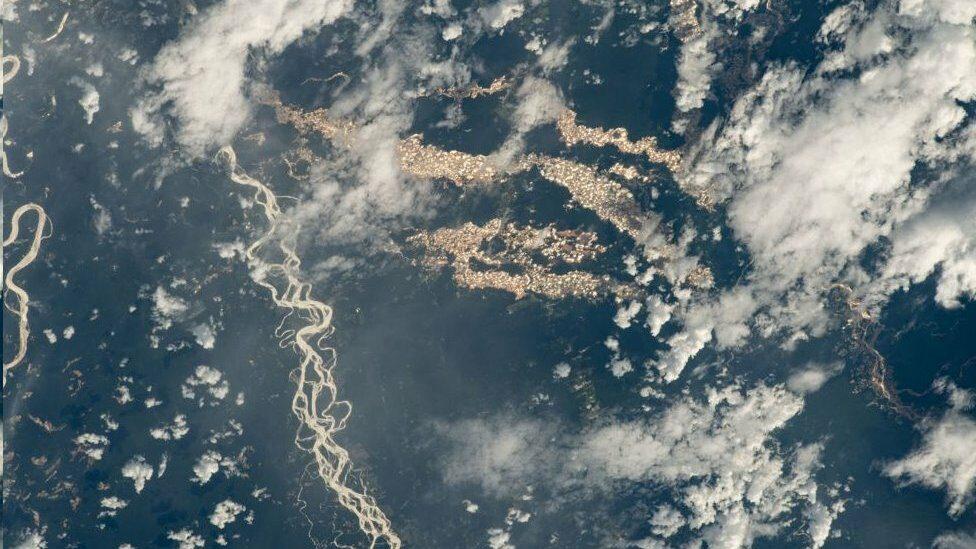 """นาซาเผยภาพ """"แม่น้ำทองคำ"""" ในพื้นที่ลักลอบทำเหมืองกลางป่าแอมะซอน"""