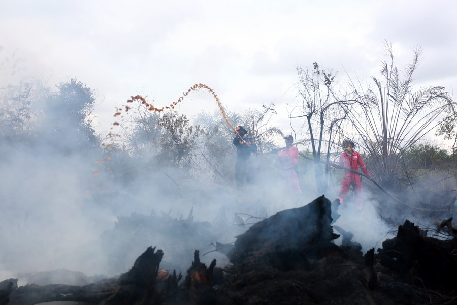 เหล่านักผจญเพลิงดับไฟในพื้นที่พรุของอินโดนีเซีย