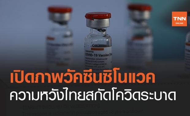 เปิดภาพ  'วัคซีนซิโนแวค' ความหวังของคนไทยสยบโควิด 19