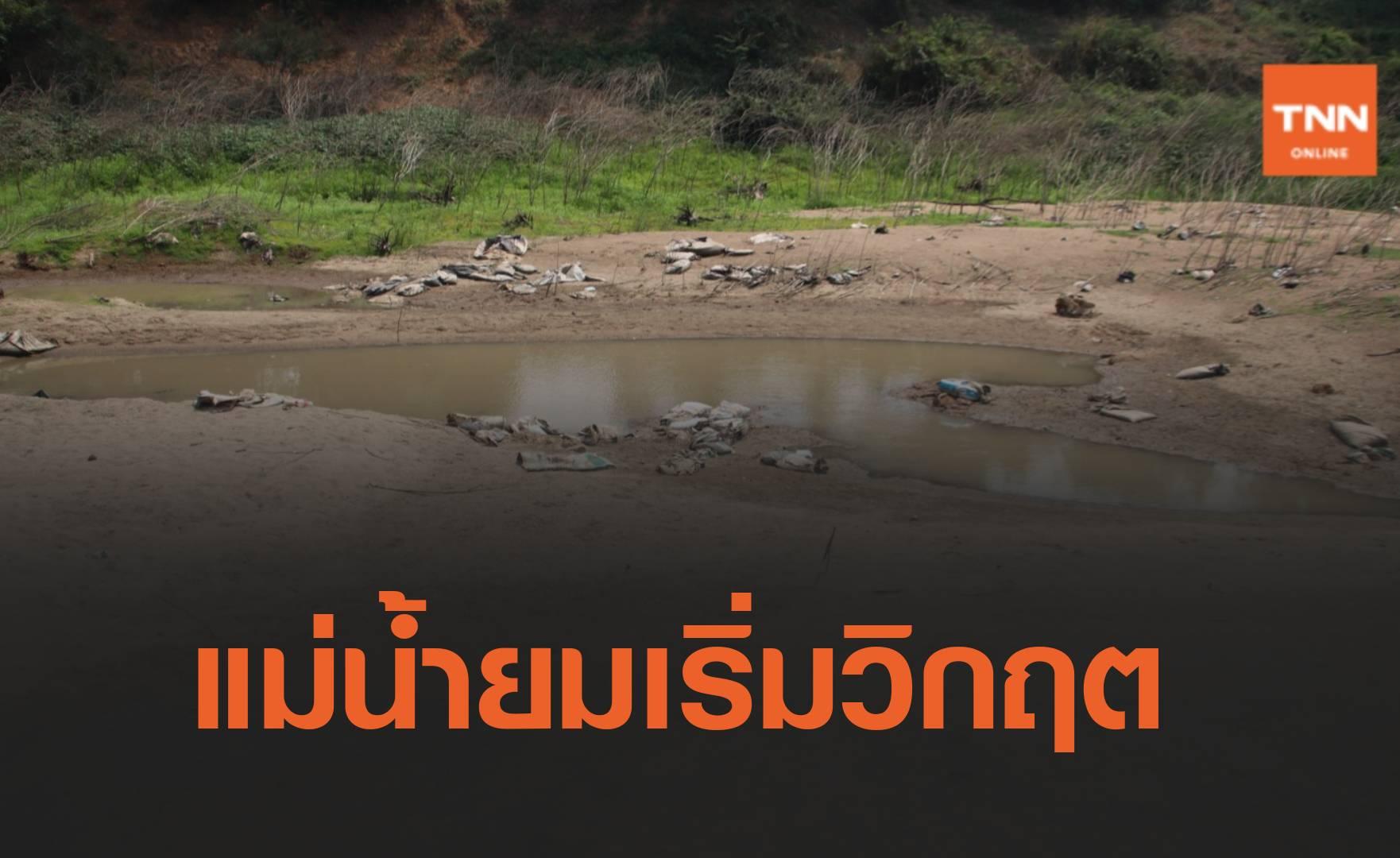 พิษณุโลกแม่น้ำยมแห้ง ชลประทานเตือนทำนารอบใหม่เสี่ยงเสียหาย