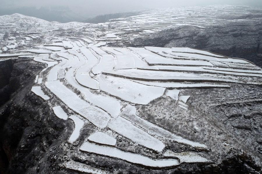 สวยแปลกตา! หิมะขาวห่มคลุม 'นาขั้นบันได' ในเหอเป่ย