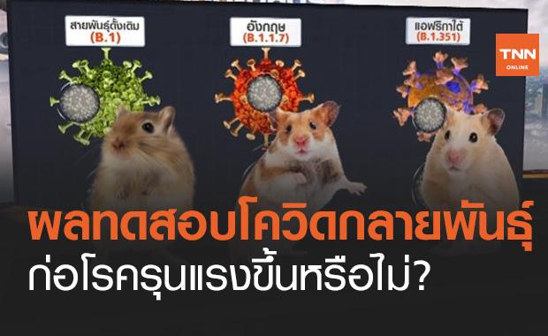 เปิดผลทดสอบไวรัสโควิดกลายพันธุ์ ก่อโรครุนแรงขึ้นหรือไม่?