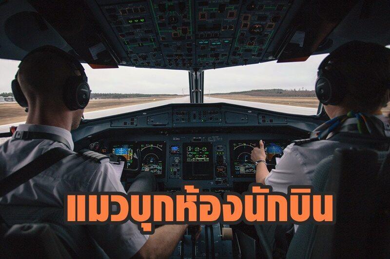 เครื่องบินโดยสารซูดาน เจอแมวบุกห้องนักบิน จนต้องนำเครื่องลงฉุกเฉิน