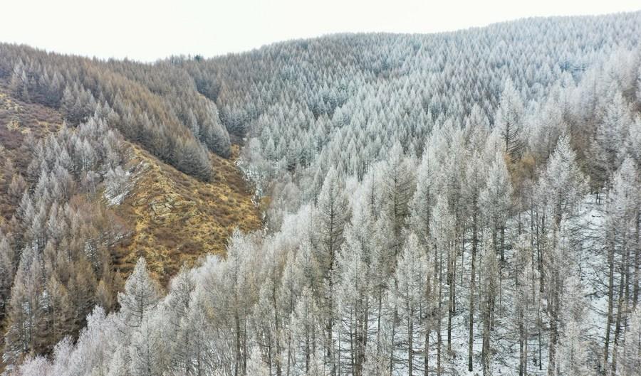 หิมะห่มคลุม 'เทือกเขาซูมู่' เนรมิตแดนเทพนิยาย