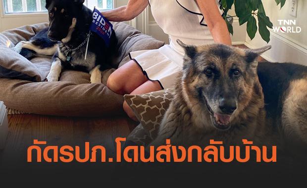 ไบเดนส่ง 'สุนัขหมายเลขหนึ่ง' กลับบ้านหลังกัดจนท.ทำเนียบ