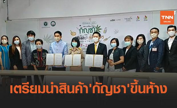 กรมการแพทย์แผนไทยเตรียมนำสินค้า 'กัญชา' ขึ้นห้างครั้งแรก