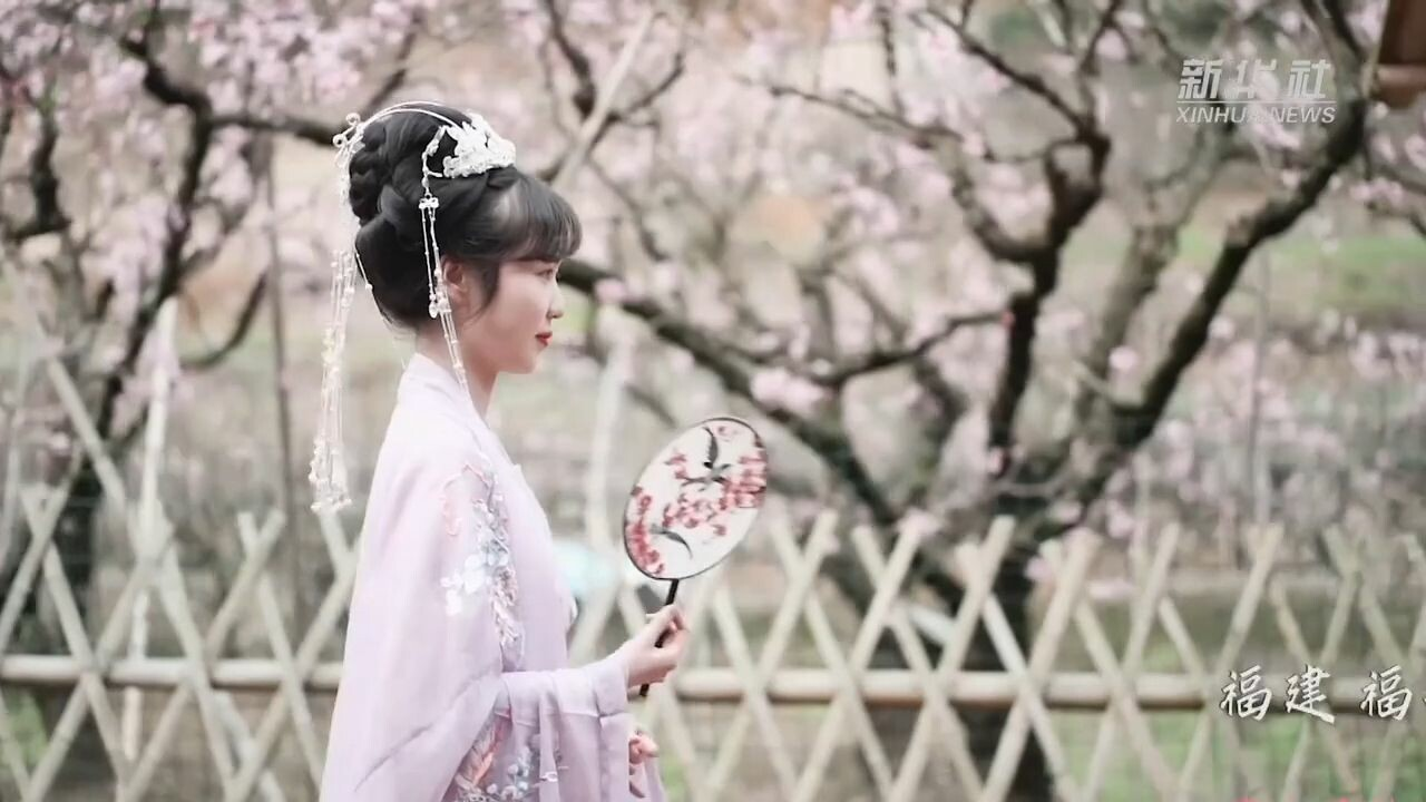 กลุ่มชาติพันธุ์เซอเตรียมชื่นชม 'ดอกท้อเดือนมีนา' ในงานเทศกาลประจำปี