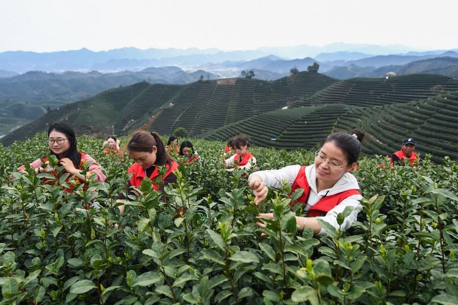 จีนจ่อคุมเข้มปราบปราม 'องค์การสังคมผิดกฎหมาย'