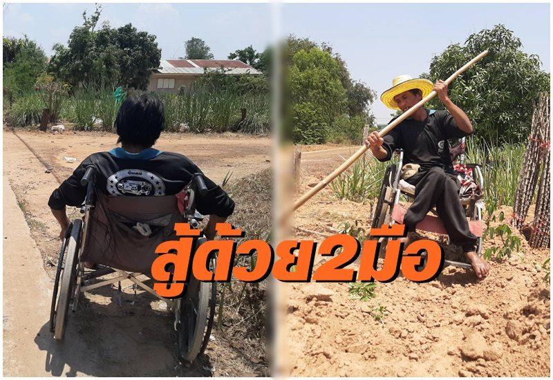 หนุ่มใหญ่สู้ชีวิต! ขาพิการ เลี้ยงหมู-ทำไร่เลี้ยงชีพตัวเอง เผยไม่เคยคิดขอเงินใครเพราะเงินหายาก