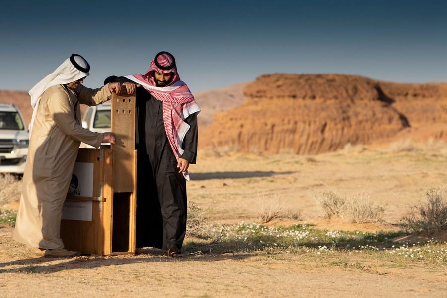 ซาอุฯ เผยแผนพัฒนา 'อัลอูลา' จุดท่องเที่ยวระดับโลก