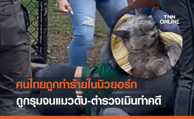 แห่แชร์! คนไทยถูกทำร้ายในนิวยอร์ก ถูกรุมสกรัมจนสูญเสียแมวรัก