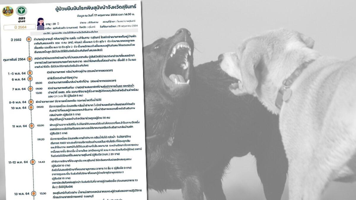 สุรินทร์ ผวา! หญิงวัย 39 เสียชีวิตจากพิษสุนัขบ้า ผู้สัมผัส-บุคลากรแพทย์เสี่ยง 101 ราย