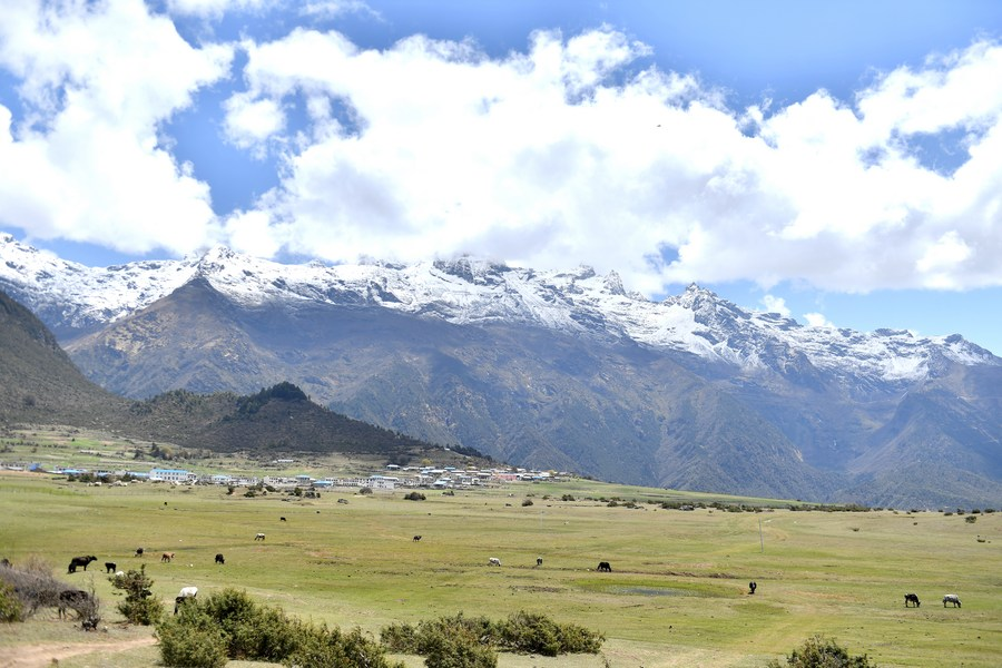 จีนเผย 'ทิเบต' หนึ่งในภูมิภาคสภาพแวดล้อมนิเวศ ดีที่สุดในโลก