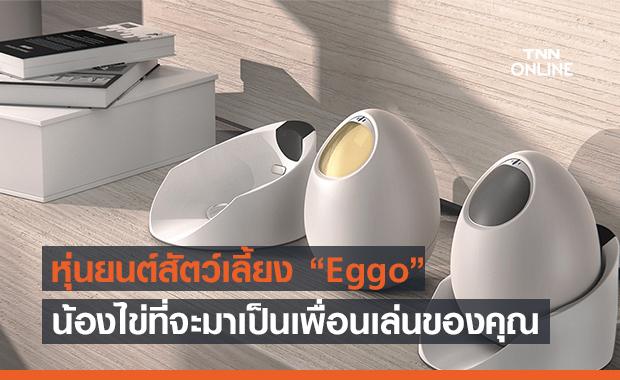 """Eggo"" หุ่นยนต์น้องไข่! ของเล่นใหม่สำหรับคนอยากมีสัตว์เลี้ยง"