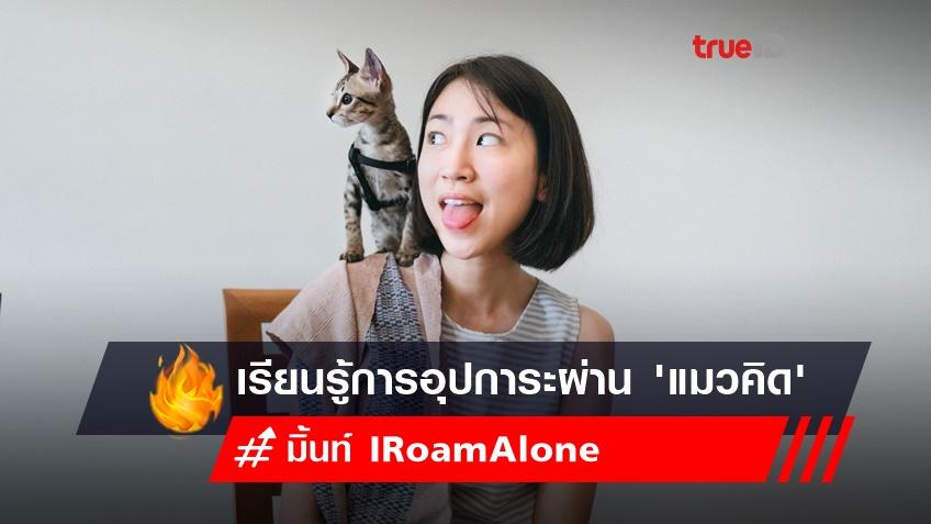 วิเคราะห์ปัญหา 'แมวจร' เรียนรู้การอุปการะผ่าน 'คิด' แมวน้อยของมิ้นท์ I Roam Alone