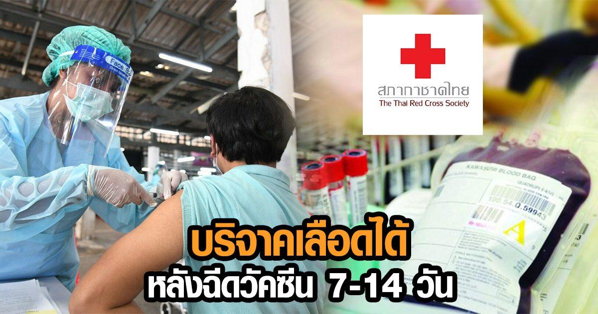 สภากาชาดไทย หลังฉีดวัคซีนโควิดแล้ว 7-14 วัน สามารถบริจาคเลือดได้