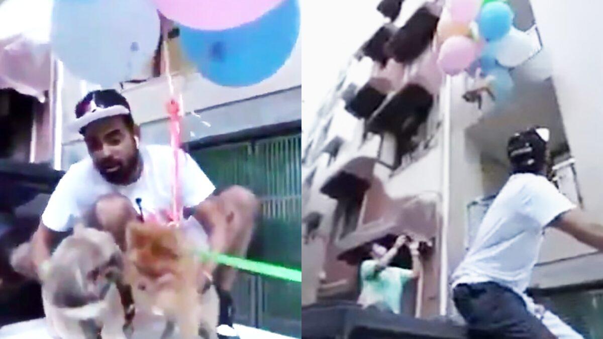 ยูทูบเบอร์อินเดียถูกจับ! พิเรนทร์ผูกหมากับลูกโป่ง ปล่อยลอยในอากาศ
