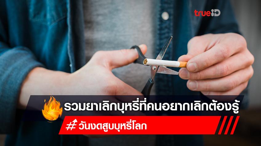 """รู้จัก """"ไซทิซีน"""" ยาเลิกบุหรี่ของไทย และยาเลิกบุหรี่ชนิดอื่น ที่นักสูบห้ามพลาด!"""