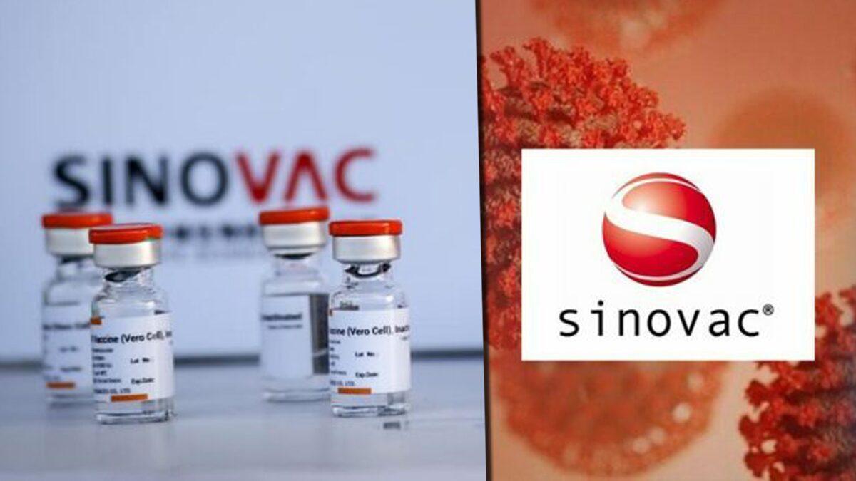 ชมรมแพทย์ชนบท เปิดเบื้องหลัง ทำไม 'ซิโนแวค' จึงกลายเป็นวัคซีนหลักของไทย