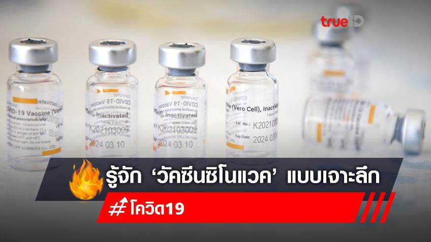 """รู้จัก """"วัคซีนซิโนแวค"""" หลัง WHO รับรองใช้ป้องกันโควิด-19"""