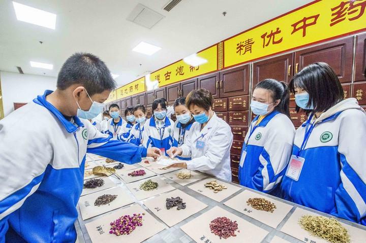 จีนชี้ งานสืบสาน-ต่อยอด 'การแพทย์แผนจีน' ก้าวหน้า