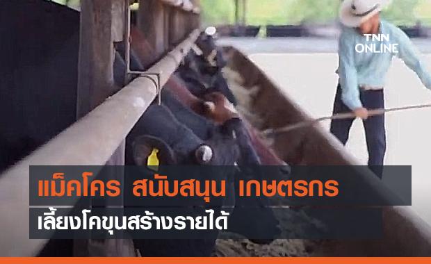 แม็คโคร สนับสนุน เกษตรกรเลี้ยงโคขุนสร้างรายได้ #แม็คโครเคียงข้างเกษตกรไทย (คลิป)