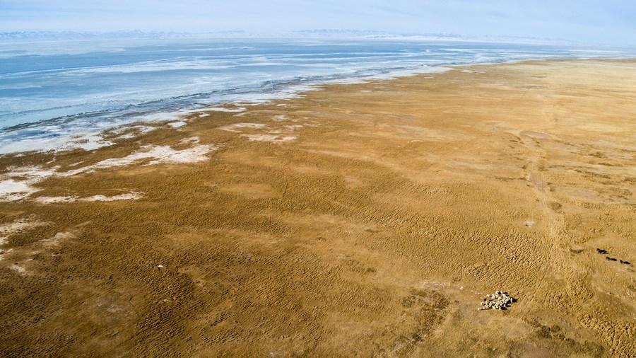 ชิงไห่พลิกฟื้น 'พื้นที่แห้งแล้ง' กว่า 3.5 ล้านไร่ใน 5 ปี