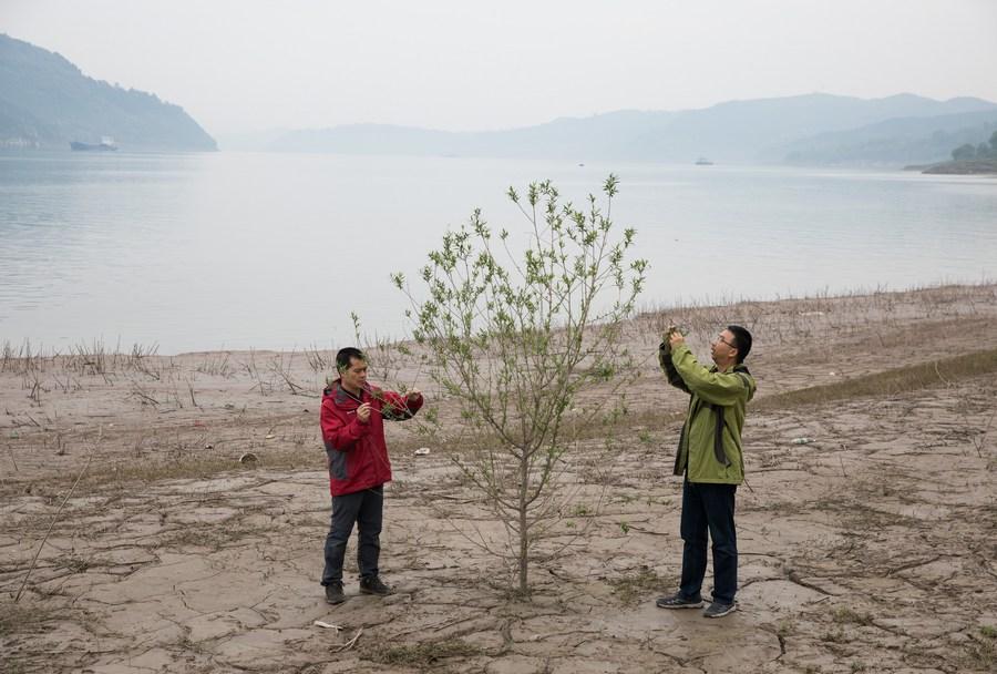 จีนเผยพื้นที่ 'ดินสึกกร่อน' ลดลงเกือบ 1 ล้านตร.กม.