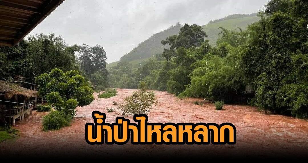 ด่วน! น้ำป่าไหลหลาก อ.บ่อเกลือ จ.น่าน ท่วมเกือบเต็มพื้นที่ ฝนตกหนักยังไม่หยุด