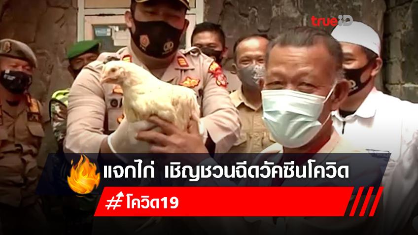อินโดนีเซีย แจกไก่ตัวเป็นๆ เชิญชวนผู้สูงวัยฉีดวัคซีนโควิด
