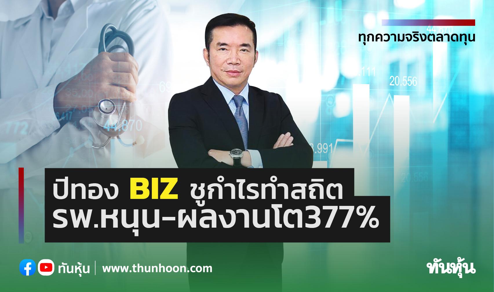 ปีทองBIZชูกำไรทำสถิติ รพ.หนุน-ผลงานโต377%