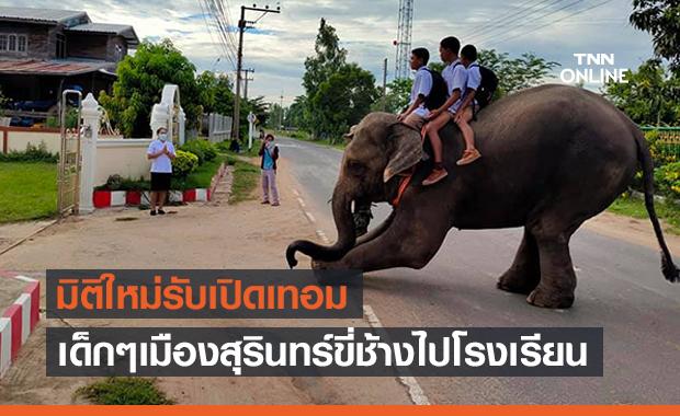 มิติใหม่! เปิดภาพเด็กๆชาวสุรินทร์เล่นใหญ่ขี่ช้างไปเรียน