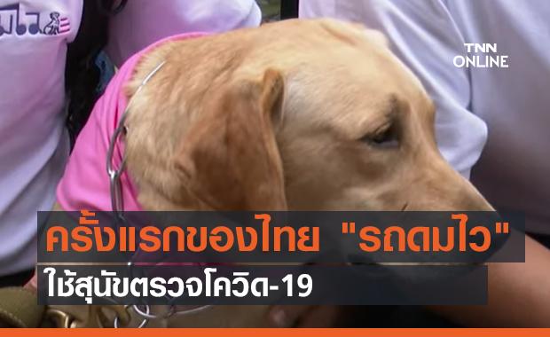 """ครั้งแรกของไทย """"รถดมไว""""ใช้สุนัขตรวจโควิด-19 (คลิป)"""