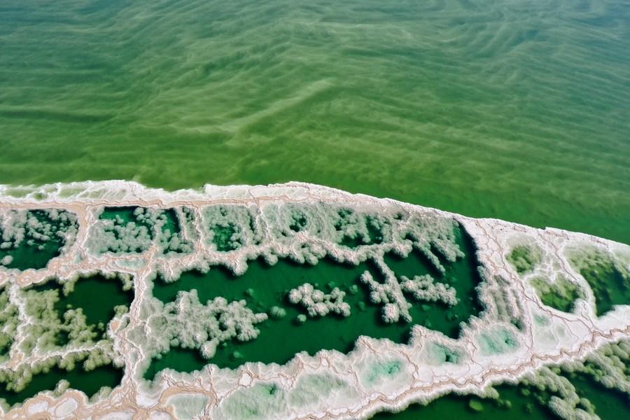 ยล 'ผลึกเกลือ' ก่อตัวสวยงามใน 'ทะเลสาบเดดซี'