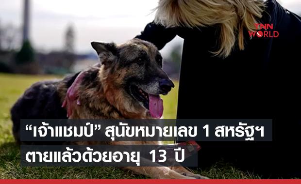 """""""เจ้าแชมป์""""สุนัขหมายเลข 1 ของสหรัฐฯตายแล้ว"""