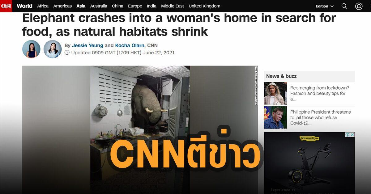 น้องดังแล้ว! ซีเอ็นเอ็น ตีข่าวช้างไทยบุกครัวหาของกิน