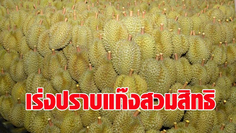 เกษตรฯ สั่งจัดการเฉียบขาดทลายขบวนการนำเข้าทุเรียนเวียดนามสวมสิทธิทุเรียนไทยส่งออกจีน