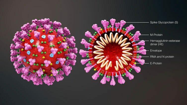 สงขลา พบป่วยใหม่ 216 ราย สะสม 4,159 ราย อสม.รับวัคซีนเข็ม 2 ดับเร่งสอบสวนโรค