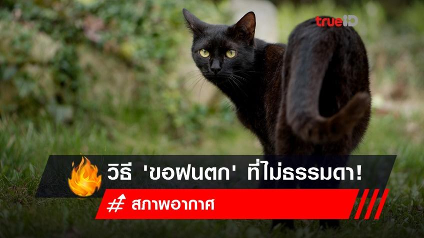 จาก 'สภาพอากาศ' ฮอตทะลุปรอท สู่วิธีขอฝนที่ไม่ธรรมดา! แถมไม่ได้มีแค่ไทย