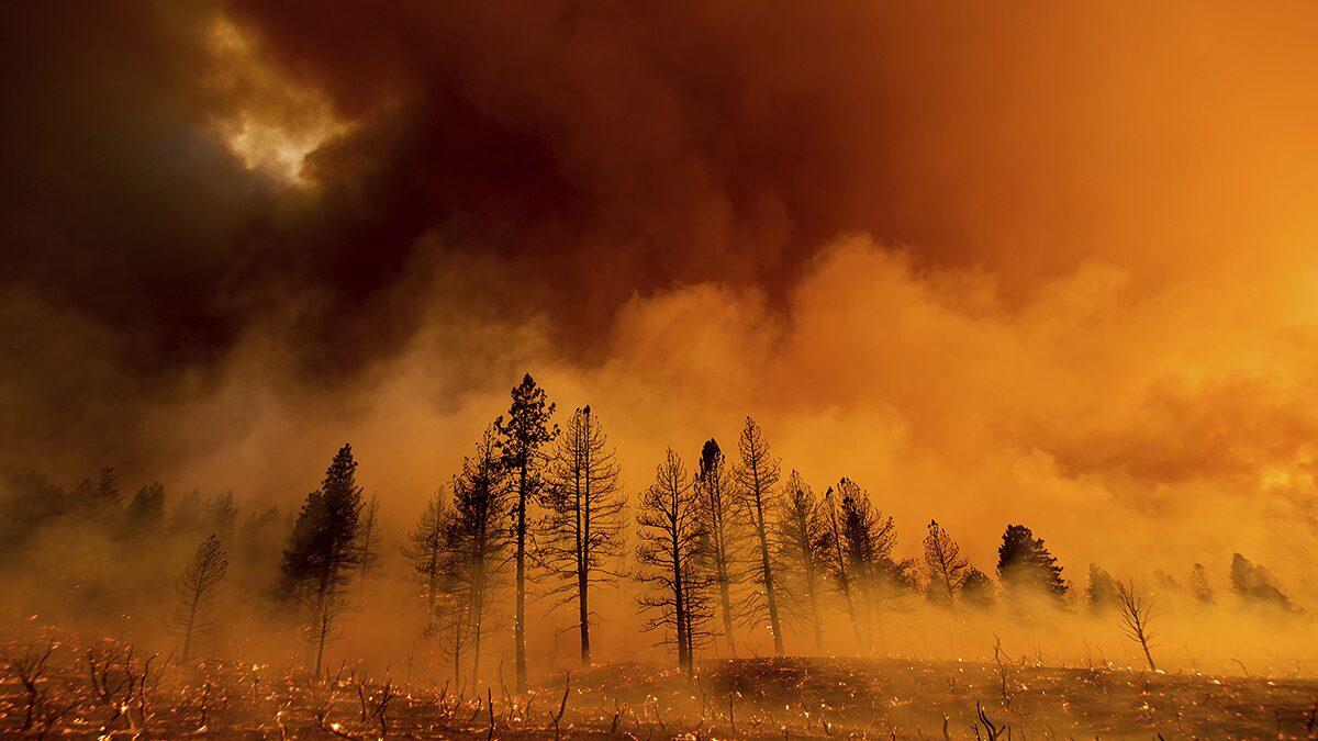 แคลิฟอร์เนียเร่งควบคุมไฟป่า คลื่นความร้อนปกคลุมซีกตะวันตกสหรัฐ