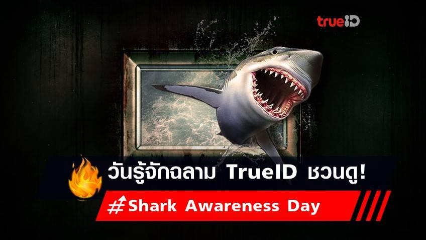 วันรู้จักฉลาม 14 กรกฎาคม TrueID ชวนดู!
