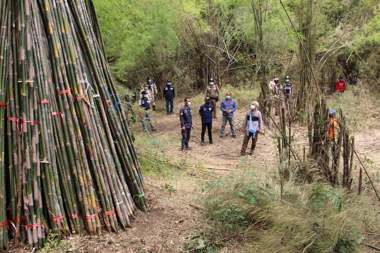 เจ้าหน้าที่ตรวจยึดไม้ไผ่รวกกว่า 5 พันลํา หลังมือดี แอบตัดในป่าชุมชน