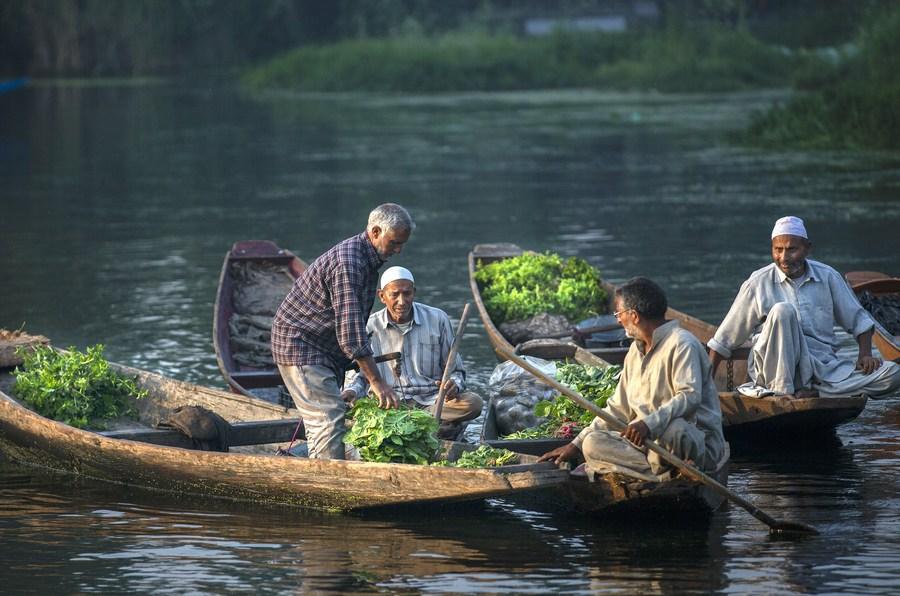แจวเรือขายผักตลาดกลางน้ำในศรีนาการ์