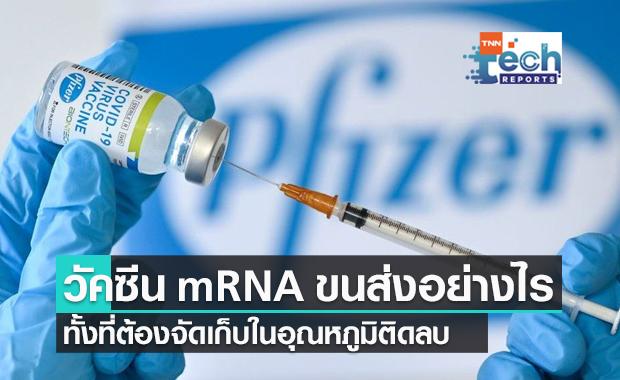 วัคซีน mRNA เดินทางมาอย่างไร ทั้งที่ต้องจัดเก็บในอุณหภูมิติดลบ