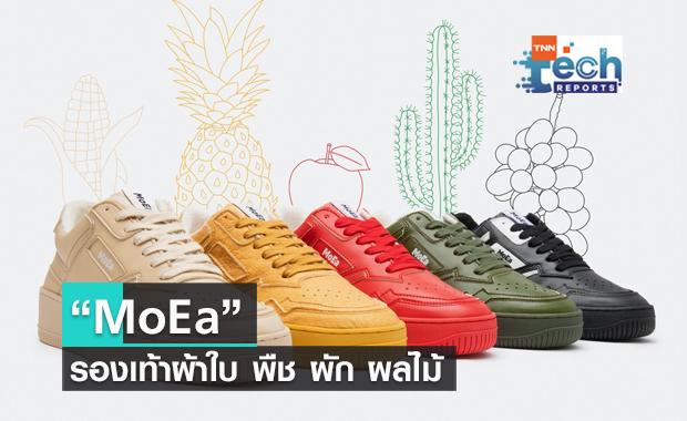 MoEa รองเท้าผ้าใบที่ทำขึ้นจาก แอปเปิล สับปะรด องุ่น ข้าวโพด ไปจนถึงกระบองเพชร