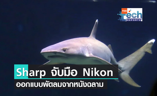 Sharp และ Nikon ออกแบบพัดลมประหยัดพลังงานจากหนังฉลาม