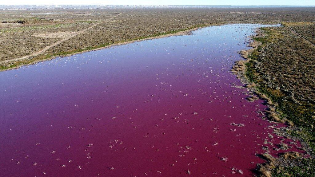 ตะลึง! ทะเลสาบอาร์เจนตินาเป็นสีชมพู เฉลยเหตุเพราะสารพิษ