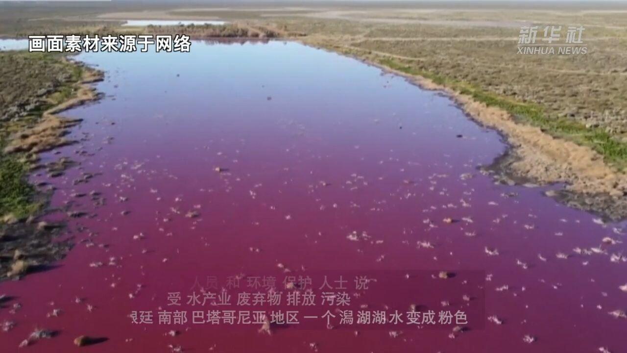 ทะเลสาบอาร์เจนตินากลายเป็น 'สีชมพู' เพราะสารพิษจากโรงงาน