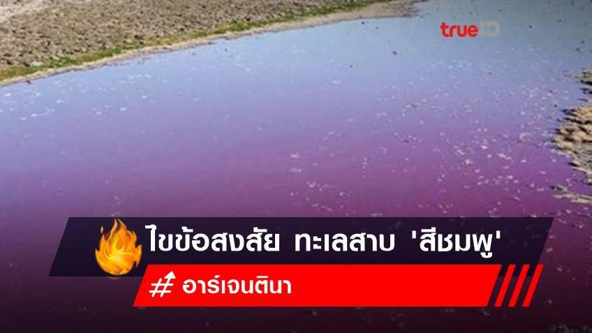 ทะเลสาบอาร์เจนตินาเป็น 'สีชมพู' นักวิจัยชี้ เกิดจากการปล่อยของเสียจากโรงงานผลิตภัณฑ์สัตว์น้ำ