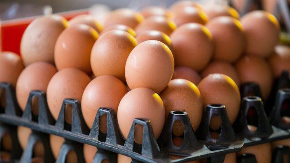 ไข่ราคาพุ่ง! พ่อค้าแม่ค้า ฉวยโอกาส ขึ้นราคาไข่ไก่ อ้าง 'โควิด' ระบาด